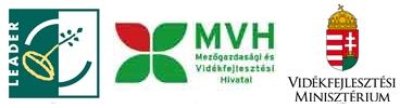 LEADER_MVH_VM